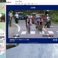 LIVE!東京オリンピック自転車ロードレース男子 決勝観戦中!