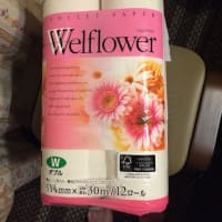 19-10-8 super東急に鎌倉市指定の有料ごみ袋が、一枚も売っていない Why? 画家の剽窃ー3