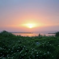 5月25日の夕陽-2