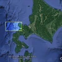 大西洋の海底アート 1: トランペット風図形: ディテール篇2