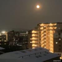 ハロウィンの夜は満月がきれいでした