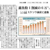 ロシア魚粉2021年1月-5月 1割減の6万トン スケトウダラ減産に連動 2021年07月29日 みなと新聞
