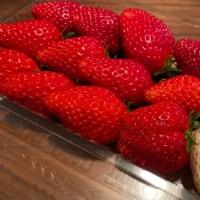 「ねぎ坊主」と「白い苺」