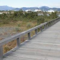 世界最長の木造歩道橋