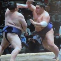 大栄翔、8連勝 正代、明瀬山、二敗に後退