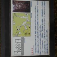 大朝町のテングシデ