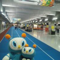 熊本に行くために千葉県で前泊してました(笑)。