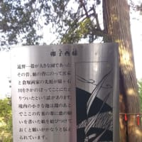 卯子酉神社~遠野旅行4~