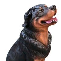 特別注文 愛犬彫刻 ロットワイラーとフレンチブル