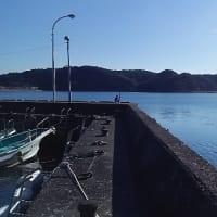 2017/02/11 釣行報告【和歌山遠征】