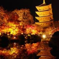 ◆令和元年12月の税務