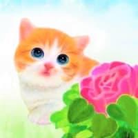 『小岩菖蒲園』