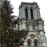 パリ・遥かパンテオン