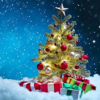 Merry chiristmas!