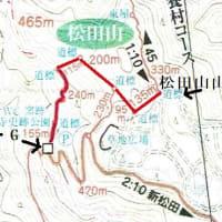 最明寺公園~松田山 河津桜