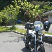 黒之瀬戸大橋まで!(FTR223)