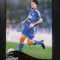 【PANINI】FCNA Cards(1996)