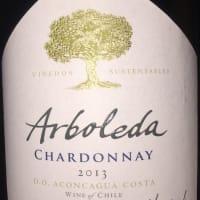 Arboleda Chardonnay 2013