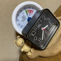 湿度計とミニ時計の関係は 蛙ちゃんだけが知っている