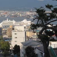 """豪華客船""""シルバーシャドー""""台風を避けながら無事入港..."""
