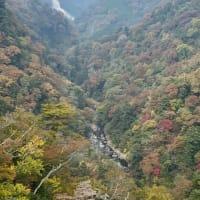 【後出し日記】2019年11月3日…大分九重方面→福岡市