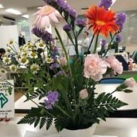 続々、お花がお出迎え