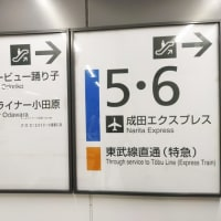 251系のスーパービューホームライナー小田原23号にお名残乗車