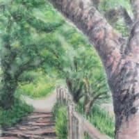 楽描き水彩画「散歩コースの緑陰」