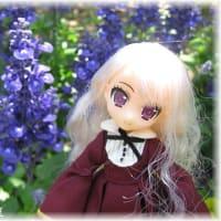 お花とヴェル♪
