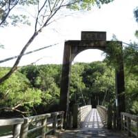 今年も出会えた!コカモメヅル~宇治川上流散歩 2019年8月中旬(中編)