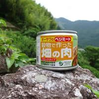 オーサワジャパンの 穀物で作った畑の肉ブロックタイプ