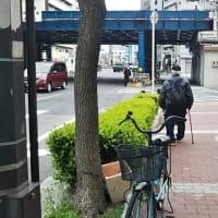 国道25号線の真ん中で自転車の荷台に積んだ段ボールを落としたオッサン。信号が変わったすきに無事回収。経費削減でリヤカーを借りずに自転車の荷台に段ボール載せてるオッサン急増。