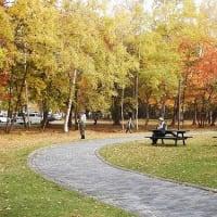 紅葉真っ盛り=秋終盤 Late autumn