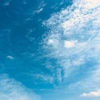 きれいだった青空と彼岸花(⋈◍>◡<◍)。✧♡