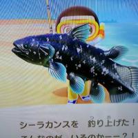 あつ森 ぎょぎょぎょな魚を釣りました(ネタバレ注意)