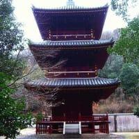 身体のだるさと赤磐の千光寺の三重塔。