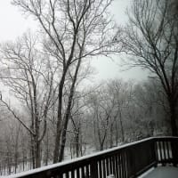 #1343: 雪がすごいです。