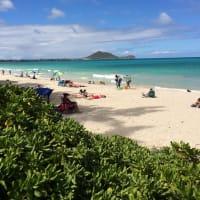 ハワイの海のリスク。1年前の記事を見て