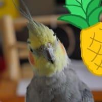 パイナップルの日(8月17日)