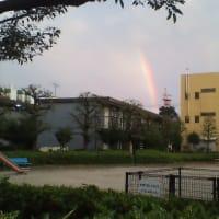 昨日の虹。