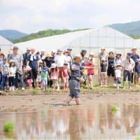 田植え体験2019を開催しました。