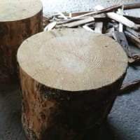 玉切り台で丸太を切る