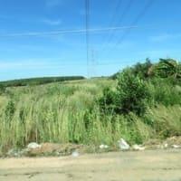 ラオスからの電力輸入本格化へ