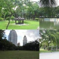 私のお庭であるベンジャキティ公園は 今工事中!