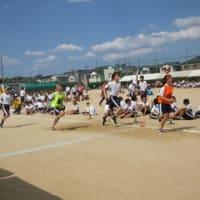 春に開催すされるようになった、高槻市立第十中学校の体育祭を見学させて貰いました。