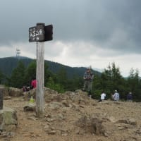 2021年7月23日(金) 花の宝庫、[長野・富士見町]入笠山へ!