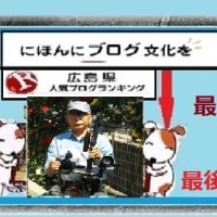 2019・11・13 広島城浅野家入府400年記念~大菊花展2019へご案内!