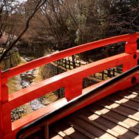 早春・京の街歩きⅣ