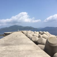 隠岐の島・・・モンキー爆走編・・・知夫里島を後へ(7日目)