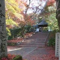 京都の紅葉もフィナーレ。鹿ヶ谷の「安楽寺」の秋の公開は、今週末まで
